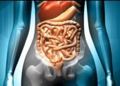 Endoscopia digestiva: papel importante na prevenção do câncer